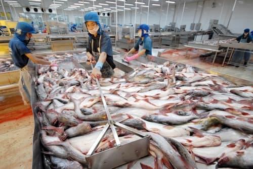 phân tích kim loại nặng trong hải sản